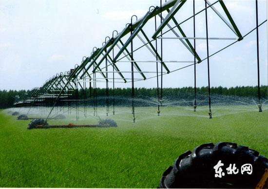 有机肥料与农业现代进程的关系